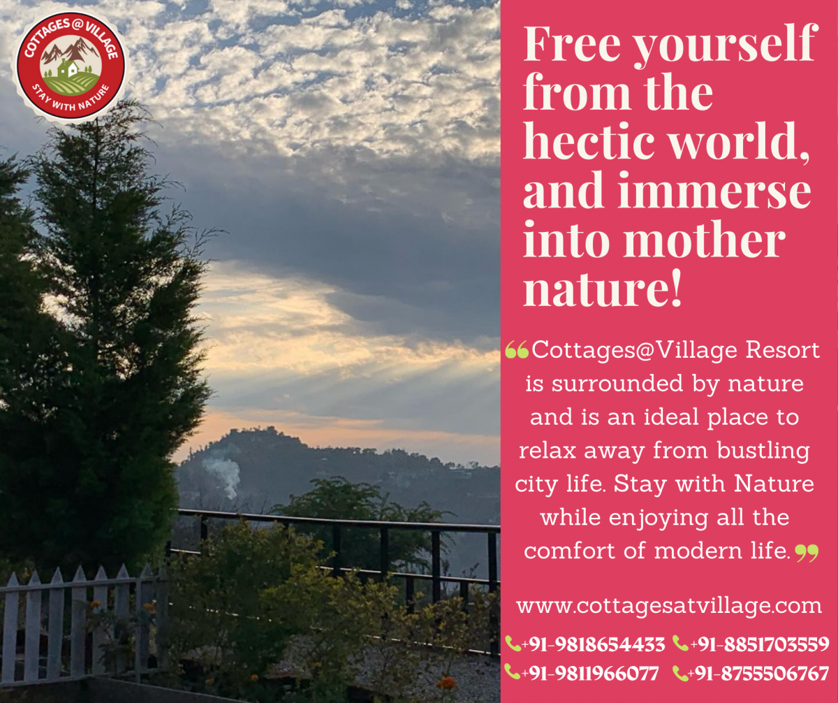 Free yourself from the hectic world, and immerse into mother nature!
